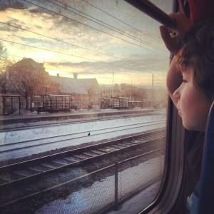 Vidar ser ut från ett tågfönster