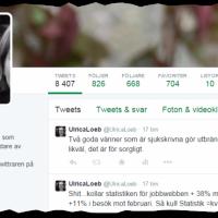 Tweetdeleter – personer som systematiskt rensar i sitt twitterflöde