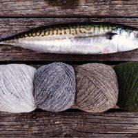 Stickhösten 2018 – svart o vitt, fiskare och nya böcker