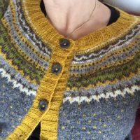 Damejakkaloppa i grått och gult
